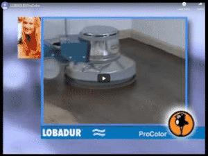Lobadur_Procolor
